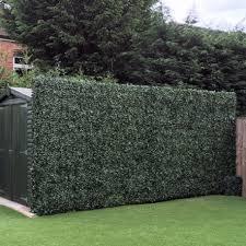 artificial ivy screens