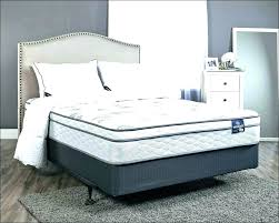 mattress in a box costco. King Box Spring Costco Bed In A Twin For Sale Mattress I