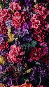 Superb Vintage Flowers ☆ Download More Floral IPhone Wallpapers At  Preppywallpapers.com