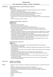 Bioinformatics Resume Sample Postdoctoral Associate Resume Samples Velvet Jobs 46
