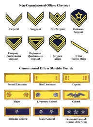 Indian Army Rank Structure Chart Pin By Anthony Peruzzo On Godstown Military Ranks Army