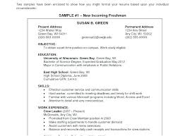Resume Best Examples Best Examples Of Resumes Simple Free Examples ...