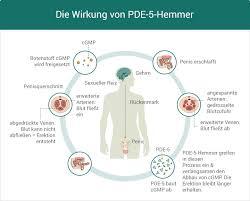 pde-5-hemmer alternative