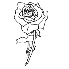 Small Picture Trend Rose Coloring Pages Top Child Coloring D 3640 Unknown