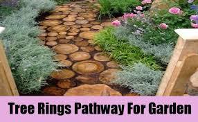 garden pathway. Tree Rings: Another Inviting Garden Pathway