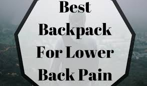 Best Laptop Backpack For Back Pain Top 3 Reviews By
