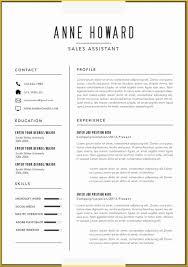 Template Amazing Resume Templates Free Word Microsoft