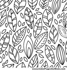Small Picture 130 best Feathers Leaves Coloring Pages for Adults images on