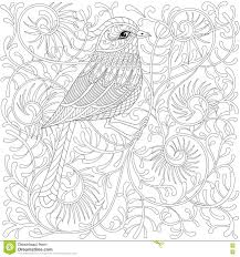 птица Zentangle вектора колибри O шаржа экзотический и тропический