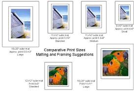 Photograph Sizes Chart Picture Sizes Chart Sizes Given Are Approximate So That