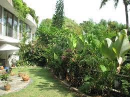 Small Picture Modern Tropical Garden For Modern House Projects to Try