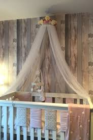 Canopy Bed Crown Molding Best 25 Canopy Over Crib Ideas On Pinterest Cute Room Ideas
