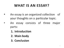types of essays lecture recap i what is an outline a  an essay is an organized collection of your thoughts on a particular topic
