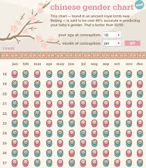 Updated Pregnancy Timeline The Wooden Spoon