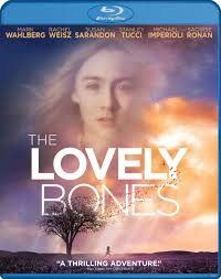 the lovely bones movie review ebert order essay online