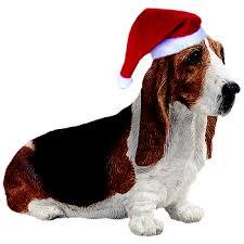 Ποιοι σκύλοι θέλουν ιδιαίτερη φροντίδα τον χειμώνα;