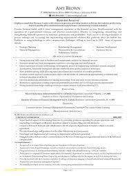 Business Analyst Sample Resume 60 Sample Resume for Business Analyst Free Sample Resume 18