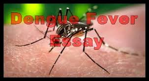 dengue fever in essay