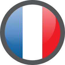 """Résultat de recherche d'images pour """"France logo"""""""