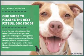 10 Best Dog Foods For Pitbulls Our 2019 Bully Feeding Guide