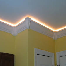 rope lighting in tray ceiling. tray ceiling lights photo 10 rope lighting in t