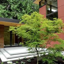Small Picture japanese balcony garden design Landscaping Gardening Ideas