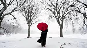 Download Wallpaper 1920x1080 Girl Umbrella Cherry Snow