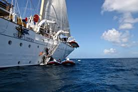 Star Flyer Sailing In Paradise 2019 Kruize