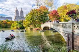 things you can do in new york city