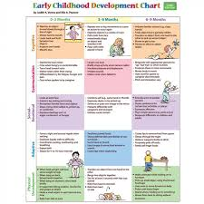Early Childhood Development Chart 3rd Edition Pro Ed