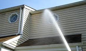 exterior pressure washing services. cleaning services: soft washing, pressure house other exterior surfaces washing services g
