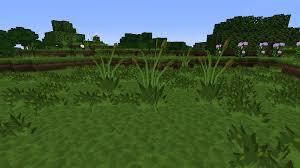 BDcraft Community Alternate double tall grass texture General