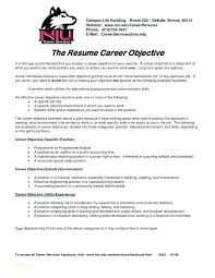 Career Objectives Examples For Resumes Examples Of Career Objectives