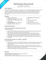 Web Developer Resume Web Developer Resume Sample India Noxdefense Com