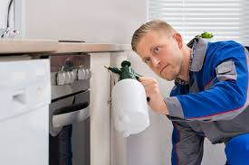 Image result for Eco-Friendly Pest Control Tips