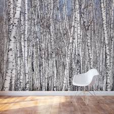 exquisite birch tree wall decal 20 white trees mural