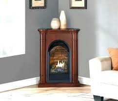 small gas stove fireplace. Perfect Gas Small Gas Fireplace For Kitchen  Freestanding Intended Small Gas Stove Fireplace