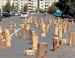 Image result for עצים כרותים