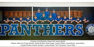 Spring Hill Dixie Youth Baseball Home