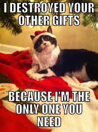 Pet Gift Guide The Best Christmas Presents For Dogs And Cats Christmas Gifts Cats