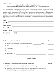 Form Cja 28e Download Printable Pdf Expert Services
