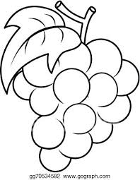 Raisins Coloring Page Grapes With Leaf Coloring Page California