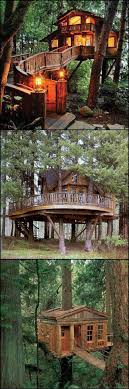 994 Best NonTHP Treehouses U0026 Structures Images On Pinterest How To Build A Treehouse For Adults