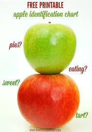 Apple Identification Chart Tart Or Sweet Cooking Or Eating