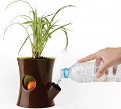 Cute Self-Watering Pots