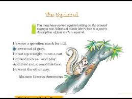 cl 7 honeycomb poem the squirrel