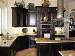 Kitchen Cabinets Stain Elegant Stain Kitchen Cabinets Kitchen Design