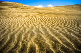 「砂」の画像検索結果