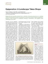 epistemology essay research paradigms ontology s epistemologies methods research paradigms ontology s epistemologies methods acircmiddot david hume epistemology essay