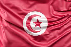 تونس: كتيب عن الإجراءات الوطنية لتنفيذ المشاريع التي يمولها الاتحاد  الأوروبي في إطار التعاون عبر الحدود